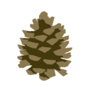 borovprashec